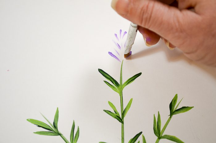 How to Paint Lavender top buds