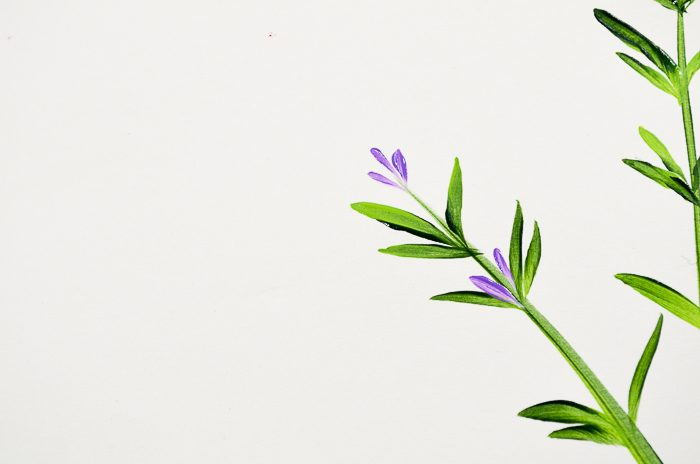 How to Paint Lavender side stems