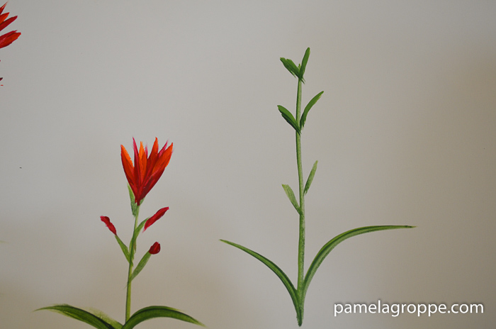 How to Paint Indian Paintbrush one stroke at a time in acrylics. Easy to paint tutorial with video. Stems