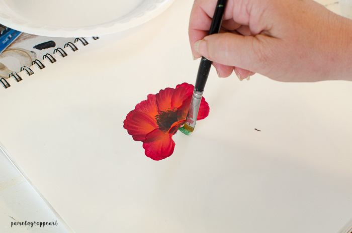 Paint Poppy Stem