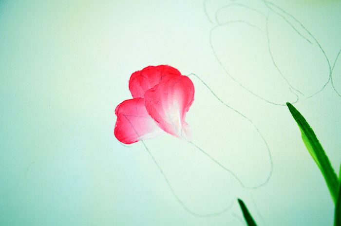 more back petals of tulip painted on, pamela groppe art